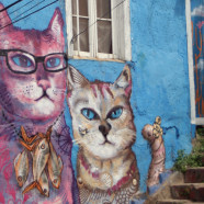 Valparaíso, Chile: Alleyways, Animals, and 100-year-old Funiculars on an Ocean Hillside.