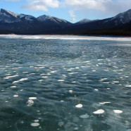 Walking on Abraham Lake in Alberta